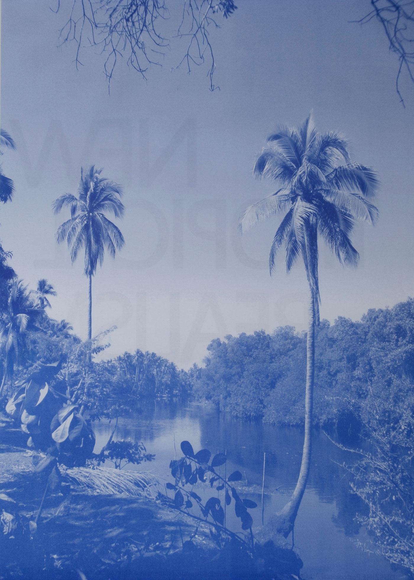 New Tropical Realism Bernabé Arévalo, Artista